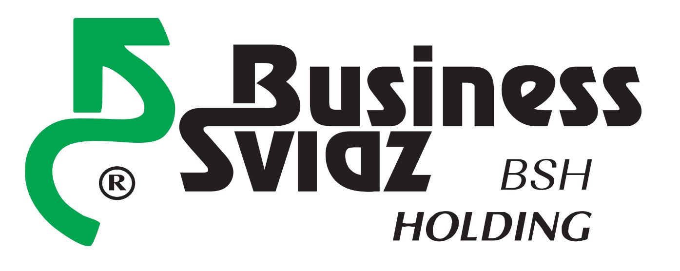SPE BUSINESS SVIAZ HOLDING LLC
